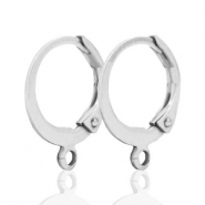 DQ Ohrringe 12mm  silver plated
